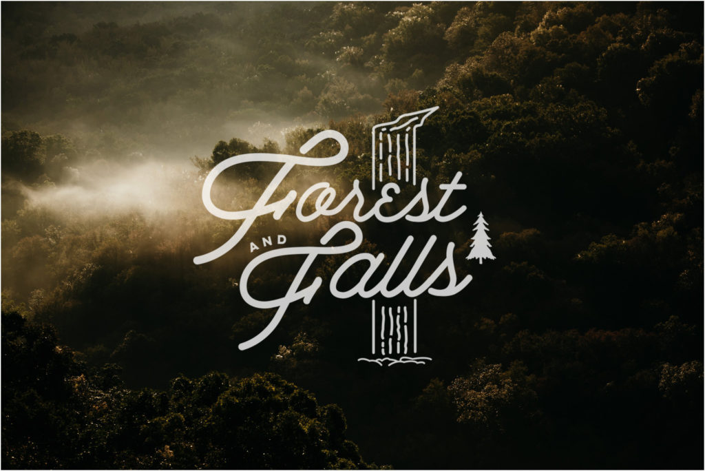 forest and falls workshop