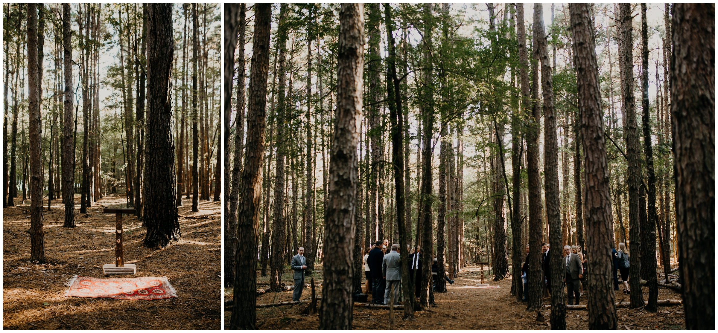horseshoe bend state park wedding