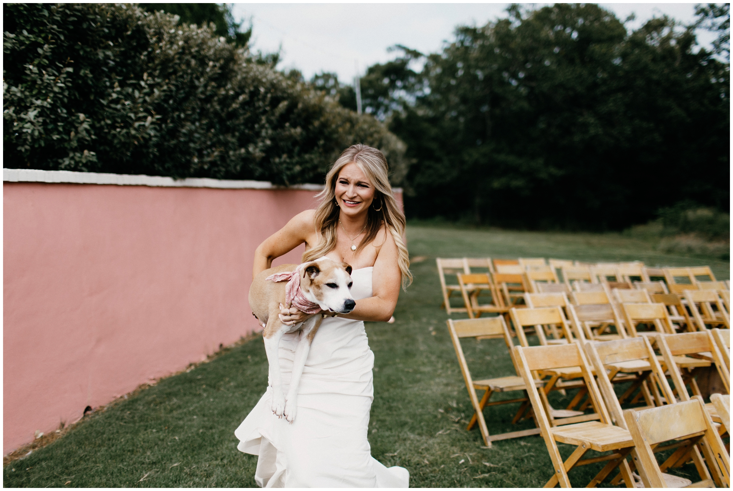 bride brings dog to first look