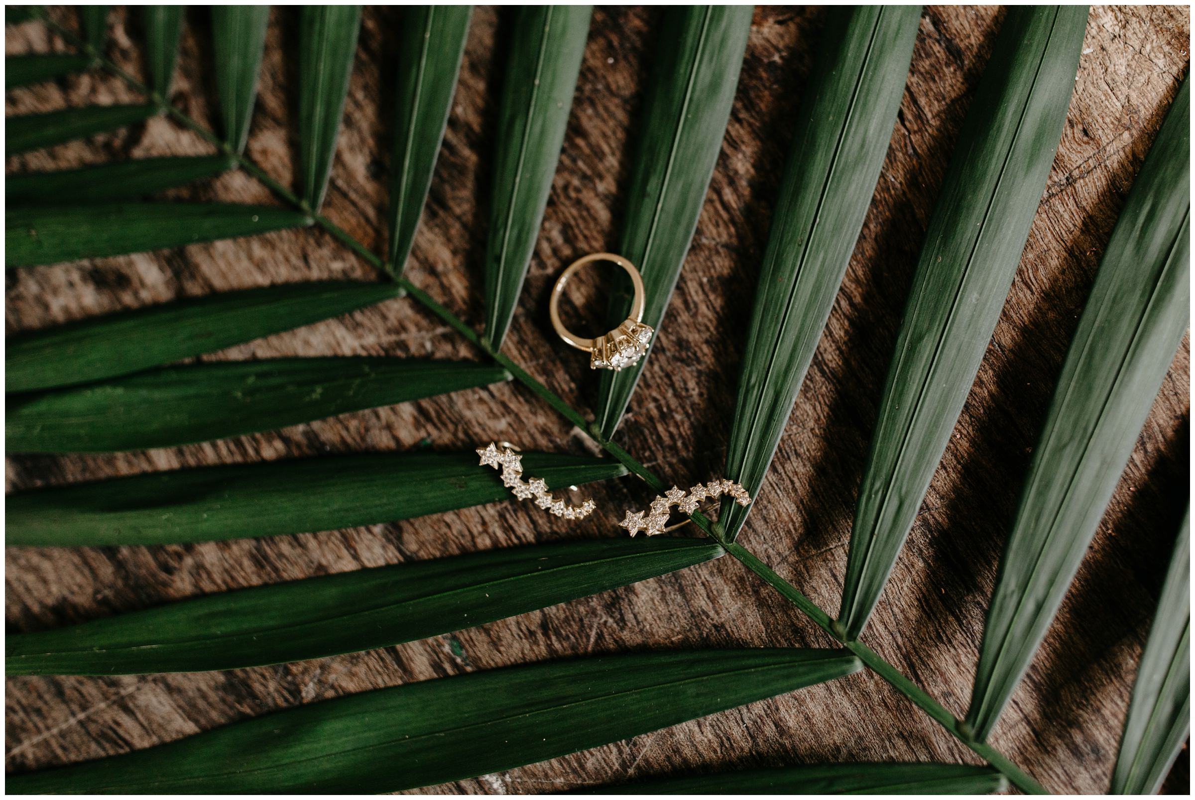 jungle ring photo on palm leaf