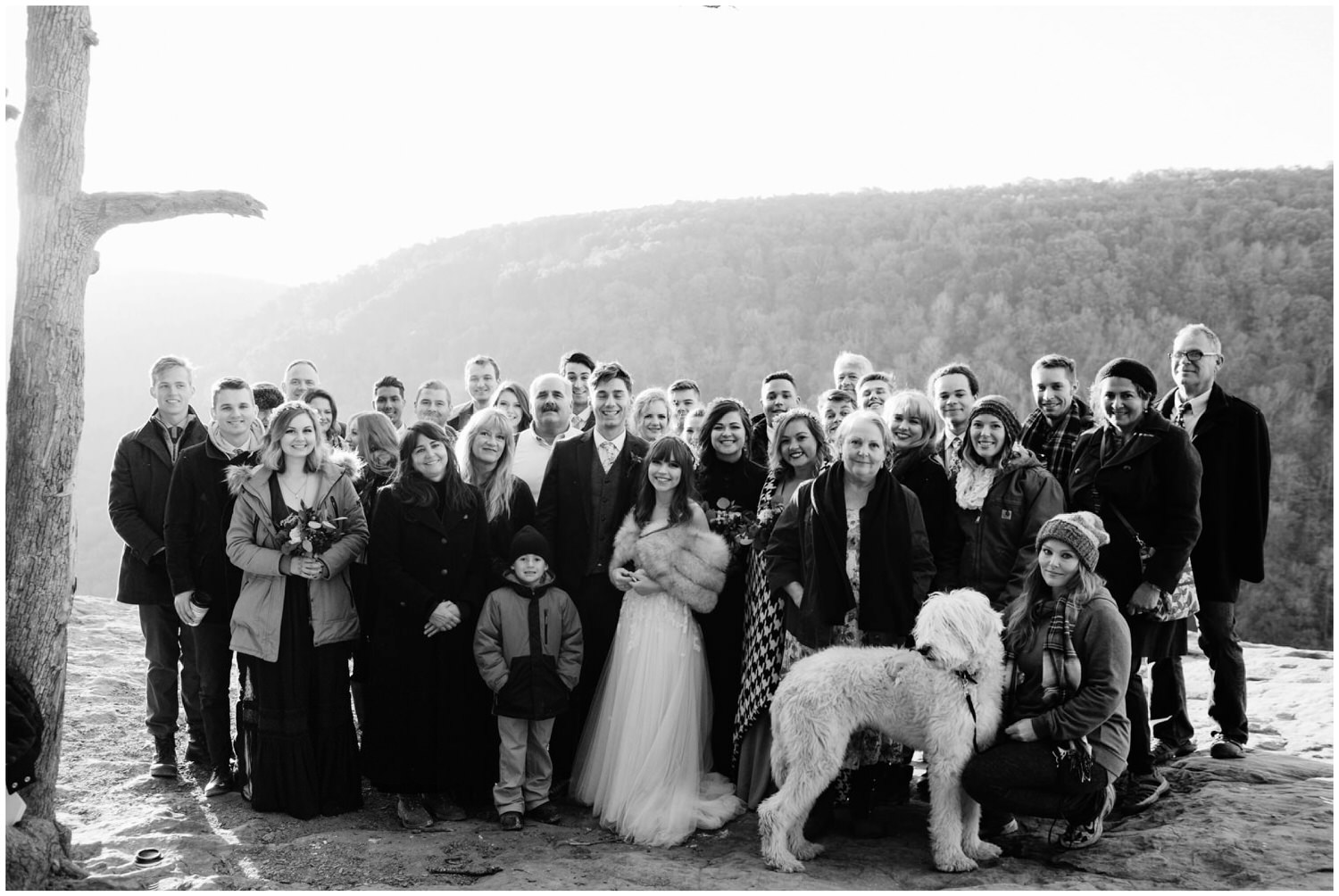 giant group photo at wedding